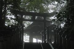 Entrance of the different world (k-o-m-a-n-e-k-o) Tags: jinja japan mishumine saitama chichibu power spot shrine          izanagi izanami  yamabushi