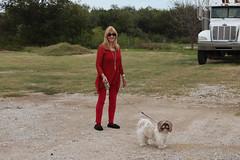 My Travel Buddies (twm1340) Tags: 2016 rv trip jacksboro tx texas jack county small north town central shihtzu dog margie