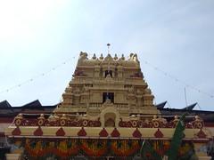 Sringeri Sharada Temple Photos Clicked By CHINMAYA M RAO (135)