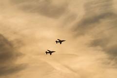 The Flying Bulls, Alpha Jets #2 (krustyhimself) Tags: scalaria wolfgangsee salzkammergut austria 2014 airshow airchallenge theflyingbulls redbull alphajet fairchilddornier