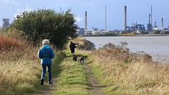 161017boness9961w (GeoJuice) Tags: scotland firthofforth foreshore lagoons bonesstograngemouth aidan pups geojuice geography