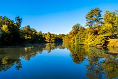 autumn has arrived (d@neumi) Tags: outdoor lake see wasser gewsser wald bume water pot reflections reflektionen herbst herbsttag autumn fall sky himmel tree panasonic lumix g7 stuttgart brensee