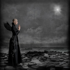 Commissioned work for a book cover ('_ellen_') Tags: angelofdeath angel death giantscauseway ireland star moon birds blackandwhite wings sea stones pray hands alone singleperson