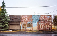 REGENERATION (akahawkeyefan) Tags: building mural sad pathetic canby ca davemeyer