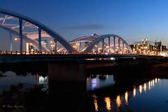Maruko Bridge /  (yanoks48) Tags: bridge  kawasaki  tokyo  japan  twilight  marukobridge  musashikosugi  tamariver  evening