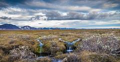 Fjllum (piparinn) Tags: sland iceland norurland fjll landslag piparinn heidar mrudalur