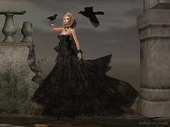 Black Widow (Kat the Desert Girl) Tags: secondlife fabulouslyfreeinsl maitreya catwa glamaffair ikon truthhair louloucompany kastlerockcouture laboheme invictus blackwidowhunt2