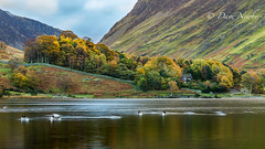 House in the trees (davenewby123) Tags: crummockwater buttermere gatesgarth lakedistrict autumn neutraldensityfilter outdoor davenewby water oldcottage plant foliage serene landscape mountain tree field hill sky mountainside waterfall river lake