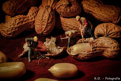 Erdnsse / Peanuts (R.O. - Fotografie) Tags: erdnsse peanuts nahaufnahme closeup close up makro macro miniaturfiguren miniature figures nsse nuts panasonic lumix dmcfz1000 dmc fz1000 fz 1000 indoor