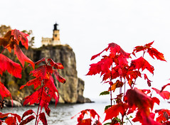split rock in red (otgpics) Tags: split rock lighthouse north shore minnesota lake superior old highway 61 red leaves foliage autumn color fall rocks water cliff nature leaf