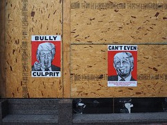 bully (nevermindtheend) Tags: bully culprit canteven trump election