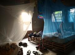 Durmiendo con mosquiteras (agu²!) Tags: lugares paísbasari paysbassari bassari country senegal sénégal mosquitos mosquitoes moustiques mosquiteras camas beds lits choza hut hutte luz light lumière puerta door porte