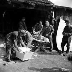 #Finnish soldiers bathe the corpse of a fallen comrade, killed during the Finnish-Soviet Continuation War, before he is placed in a coffin for burial. Uuksujrvi, Karelia, Finland (now, Ozero Uksu-Yarvi, Republic of Karelia, Russia). 16 July 1944. NSFW [1 (Histolines) Tags: histolines history timeline retro vinatage finnish soldiers bathe corpse fallen comrade killed during finnishsoviet continuation war before he is placed coffin for burial uuksujrvi karelia finland now ozero uksuyarvi republic russia 16 july 1944 nsfw 1167 x vintage dh historyporn httpifttt2gwakkz