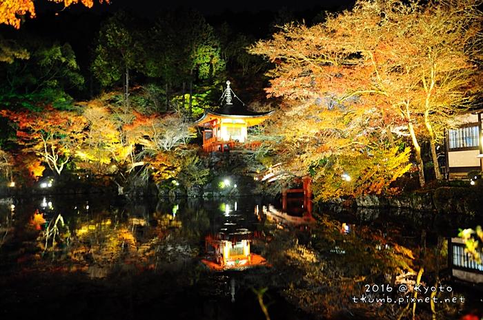 2016醍醐寺夜楓12.JPG