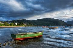 Puerto Cisnes. Aysn. Chile (Daniel Sziklai G.) Tags: coyhaique puertocisnes aysn chile patagonia carreteraaustral