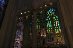 NH0A3639s (michael.soukup) Tags: barcelona sagradafamlia familia basilica church stainedglass color colorful windows nave interior gaudi churchoftheholyfamily catholicchurch artnouveau architecture neogothic spain catalonia