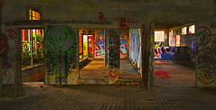 The Cows Have Left the Premises (charhedman) Tags: mission abandonedbarn graffiti slidersunday cows g