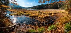 Vosges (chicos54) Tags: paysagevosgien vosges lacdelispach lac automne lispach gerardmer tourbière