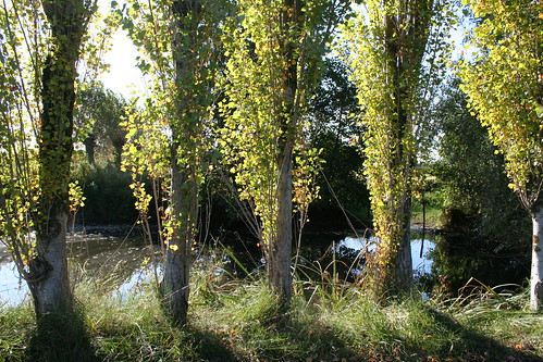 Poekebeekvallei