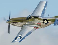 P51 - Pilot Aboard (4myrrh1) Tags: lynchburg 2016 aircraft airplane aviation airshow airplanes airport virginia va canon ef100400l 7dii flight flying aerobatic
