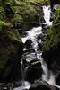 Tumbling Water (Click And Pray) Tags: managedbyclickandpraysflickrmanagr pucksglen argyll scotland scottish landscape portraitformat moss glen gorge stream river rocks downstream waterfall kilmun pucksglenargyllscotlandscottishlandscapeportraitformatmossglengorgestreamriverrocksdownstreamwaterfallkilmungbr