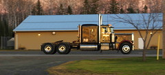 Cleans up good (jr-transport) Tags: peterbilt 359 classic numbered limited largecar smoke epa