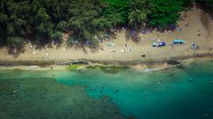 Ke'e Beach (Adam Claeys) Tags: beachhawaiikauaihelicopter beach kauai hawaii heli helicopter aerial high heights outside summer sun burn napalicoast coast na pali outdoor sand ocean swimming scuba diving