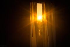 Good Morning! (SerpaDesign) Tags: good morning day sun light window curtain open bright shine rays tannerserpa serpadesign
