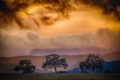 North County (ronniegoyette) Tags: 2016 northcoast pasorobles clouds hills droh dailyrayofhope