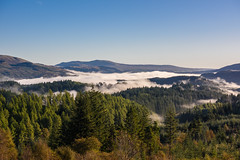 Lingering Mist, Dukes Pass (Sarah-86) Tags: nikond810 landscape scotland autumn mist trossachs highland trees woodland