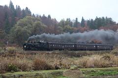 Black plume (yukky89_yamashita) Tags: 飯山市 長野 sl飯山線ロマン号 iiyama nagano japan sl c11325 飯山線 jr東日本 jr iiyamaline