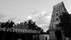 Marundeeshwarar Temple, Thiruvanmiyur (Devanathan Ram) Tags: temple blackandwhitephotography blackwhitephotography thiruvanmiyur nammachennai mobileclicks marundeeshwarartemple mychennai motorolag3