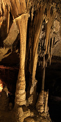I think it's called a Column- Lehman Cave (zgrial) Tags: nationalpark nevada cave column geology stalactites stalagmites greatbasin rockformation lehmancave speleothems zgrial