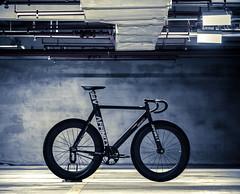 My Tank (father TU) Tags: fixie fixedgear kissena trackbike bikeporn affinity fathertu