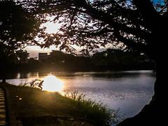 Landscapes relaxing (carlakarinazpt) Tags: viaje green contraluz children arbol lago atardecer colombia vida silueta tarde soleada