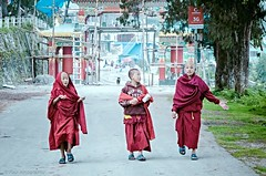 "Little Monks (Paul Nicodemus) Tags: travel people mountains rain clouds landscapes skies azure adventure journey solo odyssey assam himalayas valleys unplanned tawang natives bomdila tezpur ""westbengal"" ""arunachalpradesh"" ""bumlapass"" ""selapass"" ""paulartography"" ""paulnicodemus"