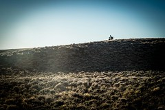 Cycling in the sagebrush.