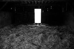 (-- brian cameron --) Tags: door blackandwhite bw barn rural blackwhite straw hay 550d