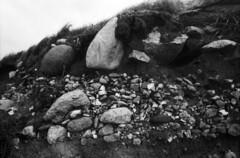 Rock Strata I (holtelars) Tags: spotmatic spotmaticf smc takumar smctakumar 28mm f35 film analog rollei rpx rpx400 rolleirpx400 400iso d76 homeprocessing bw jobo atl1500 autolab monochrome larsholte filmphotography filmforever fynshoved denmark blackandwhite rocks beach analogfototur asahi pentax
