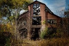 (rickhanger) Tags: urbex urbanexploration abandoned abandonedfactory overgrown rickhanger rickhangerphotography