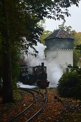 Stoomtrein / Steam Train (CoasterMadMatt) Tags: park autumn oktober holland netherlands dutch train photography amusement nikon october ride photos north herfst engine nederland steam photographs theme amusementpark locomotive rides efteling brabant themepark steamengine steamtrain noordbrabant kaatsheuvel steamlocomotive pretpark rijden northbrabant nikond3200 2015 stoomtrein d3200 coastermadmatt october2015 coastermadmattphotography autumn2015 efteling2015 oktober2015 herfst2015