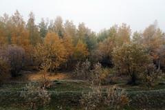 RU2030 伊爾庫次克州 (S.K. LO) Tags: russia easternsiberia irkutskregion