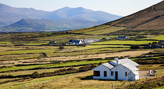 Dingle countryside (Mary Susan Smith) Tags: travel ireland vacation white holiday building green rural landscape tour farm farming dingle patchwork countykerry 2015 thechallengefactory tcfwinner pregamewinner