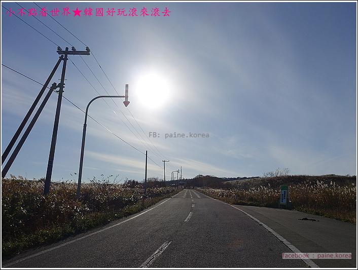 北海道奧尻島 (56).JPG