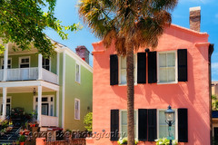 Colorful Houses of Church Street, Charleston, South Carolina (George Oze) Tags: travel usa horizontal architecture outdoors colorful scenic southcarolina streetphotography vivid nobody historic charleston southern colonialarchitecture northamerica daytime charming churchstreet quaint lowcountry pastelcolors palmettotree lowangleview sunnybright buildingexteriors
