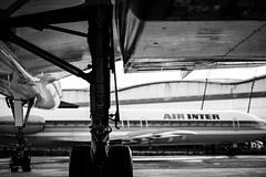 B e l o w C o n c o r d e (l a b o u s s o l e . s e o n) Tags: blackandwhite bw france airplane aircraft concorde toulouse blagnac caravelle aeroscopia