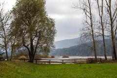 Eslovenia-2016-710 (Jos Manuel Garcs) Tags: dolenjejezero cerknica eslovenia si