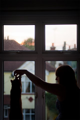 Day 208, Year 9. (evilibby) Tags: 365 3659 365days 365days9 libby ginger cat gingercat play playing window windows sittingbythewindow inside sunset jump stretch silhouette profile