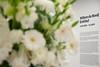 Willem de Rooij-Entitled- neue Ausstellung im MMK 2- Pressevorschau-bw_20161013_7569.jpg (Barbara Walzer) Tags: 131016 willemderooij entitled kunstausstellung ausstellung mmk 2