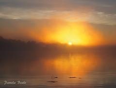 Fire in the Sky - P9250119 (Pamela Beale) Tags: sunrise sun lake nipissing ontario canada sky water lavigne orange clouds shoreline yellow calm